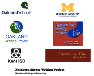 Partners for the 4T Virtual Conference on Digital Writing